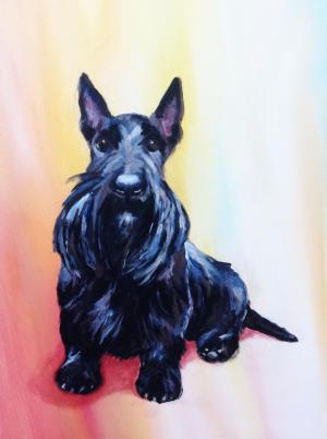 Bonnie the Scottish terrier